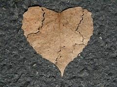 heart-742712__180